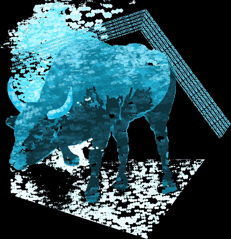 Bull Trading Order Flow Analytics Bid Ask Software